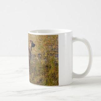 Hunting Plott Hound Dog in Marsh Coffee Mug Mug