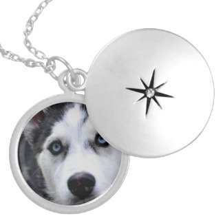 husky-54 locket necklace