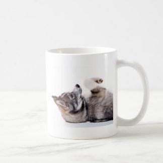 husky puppy coffee mugs