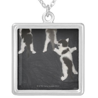 Husky Puppy Silver Plated Necklace