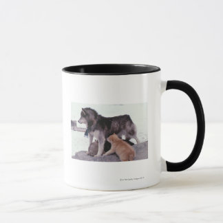 Husky with litter of pups mug