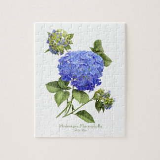 Hydrangea Blue Wave Puzzle with Tin