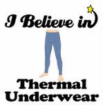 i believe in thermal underwear photo sculpture