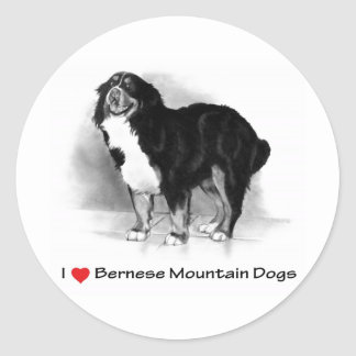 I Love (Heart) Bernese Mountain Dogs Classic Round Sticker
