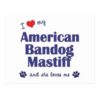 I Love My American Bandog Mastiff (Female Dog) Postcard