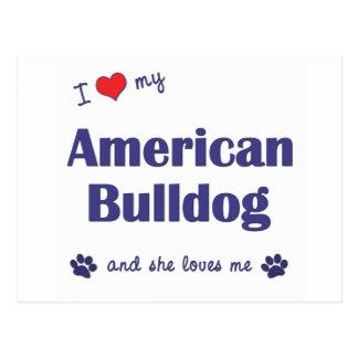 I Love My American Bulldog (Female Dog) Postcard