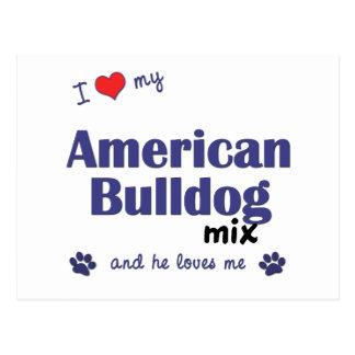 I Love My American Bulldog Mix (Male Dog) Postcard