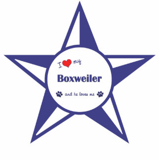I Love My Boxweiler (Male Dog) Photo Sculpture Decoration