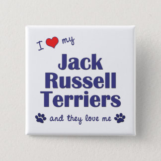 I Love My Jack Russell Terriers (Multiple Dogs) 15 Cm Square Badge