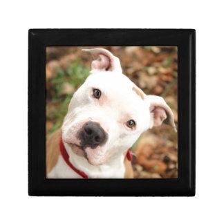 I love my Pittbull terrier Gift Box