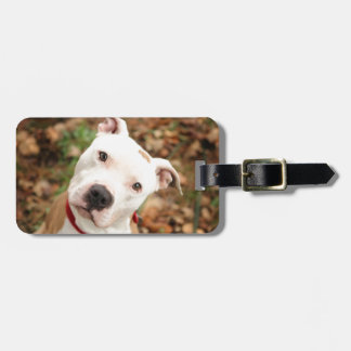 I love my Pittbull terrier Luggage Tag