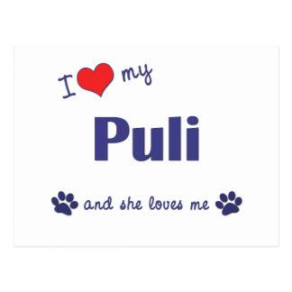 I Love My Puli (Female Dog) Postcard