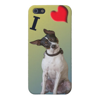 I Love my Rat Terrier iPhone 5/5S Cases