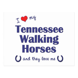 I Love My Tennessee Walking Horses (Multi Horses) Postcard