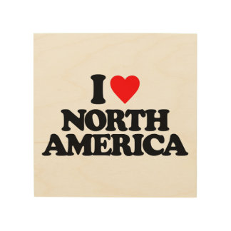 I LOVE NORTH AMERICA WOOD CANVASES
