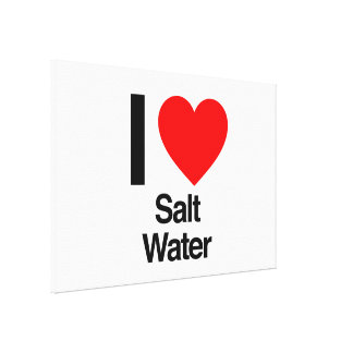 i love salt water stretched canvas print
