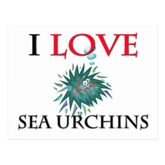I Love Sea Urchins Postcard