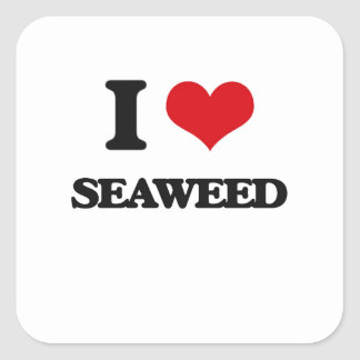 I Love Seaweed Square Stickers