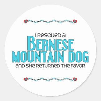 I Rescued a Bernese Mountain Dog (Female Dog) Classic Round Sticker