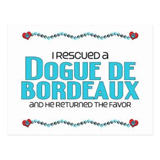 I Rescued a Dogue de Bordeaux (Male Dog) Postcard