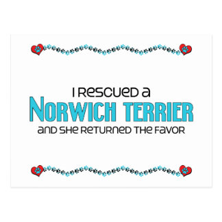 I Rescued a Norwich Terrier (Female Dog) Postcard