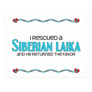 I Rescued a Siberian Laika (Male Dog) Postcard