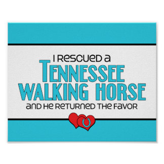 I Rescued a Tennessee Walking Horse (Male Horse) Print