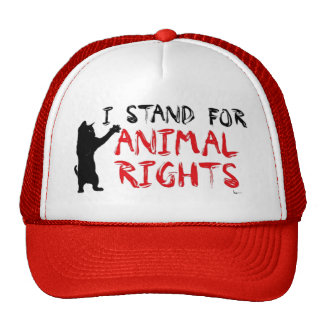 I Stand for Animal Rights Cap