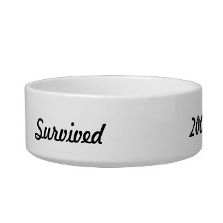 I survived 2000! cat water bowl