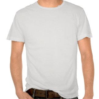 I vote Ron Paul - 2012 election president politics T Shirts