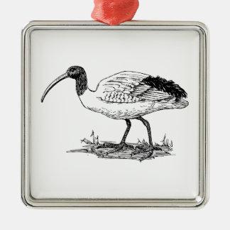 Ibis Bird Art Christmas Ornament