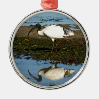 Ibis Christmas Ornament