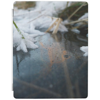 Ice iPad Cover