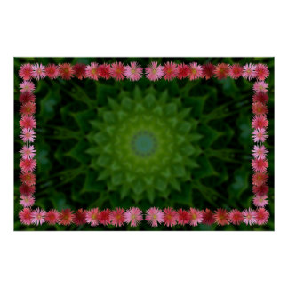 Ice Plant Flower Frame with Radial Background Poster