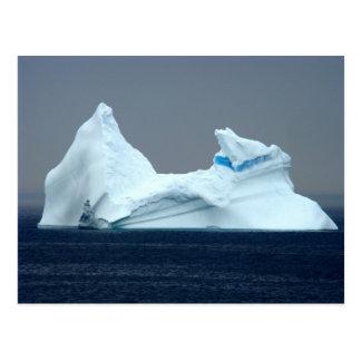 Icebergs in Newfoundland Postcard