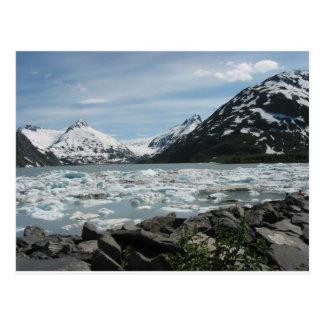 Icebergs on Glacier Bay in Alaska Postcard