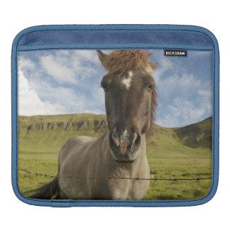 Iceland, Reykjavik. Frontal view of Icelandic iPad Sleeve