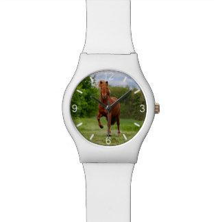 Icelandic Pony Tölt Funny Photo Horse - dial-plate Watch