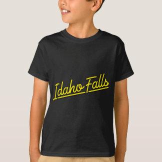 Idaho Falls in yellow T-Shirt