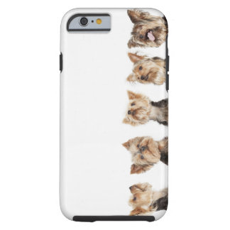 Identical dogs sitting together tough iPhone 6 case