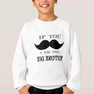 If you must ask, I am the big brother Sweatshirt