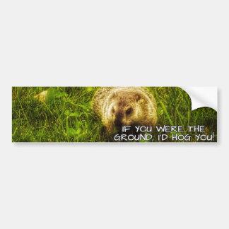 If you were the ground, I'd hog you bumper sticker