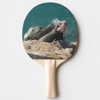 Iguana at St. Thomas I Ping Pong Paddle
