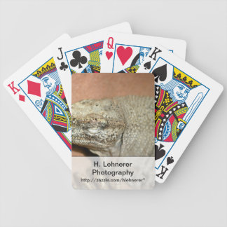 Iguana Bicycle Playing Cards