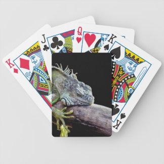 Iguana Bicycle Playing Cards