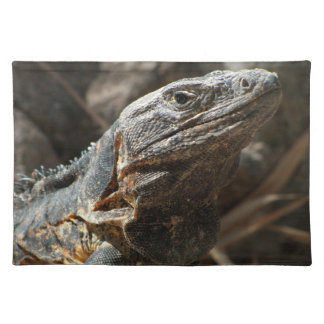 Iguana Checking You Out Placemat