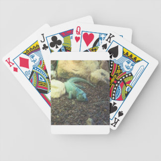 Iguana Dracon Bicycle Playing Cards