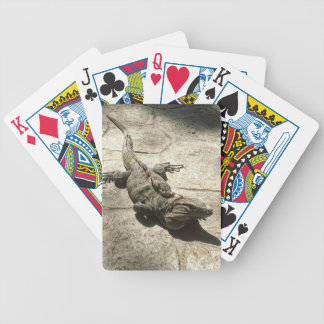 Iguana , Giant Lizard in Mexico Bicycle Playing Cards