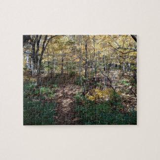 Illinois Nature Scene Jigsaw Puzzle