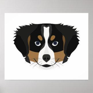 Illustration Bernese Mountain Dog Poster